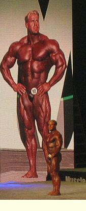 Jay Cutler oli tullut haastamaan hallitsevan mestarin
